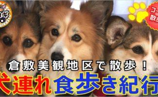 倉敷美観地区でコギ友さんと、犬連れ食べ歩き紀行